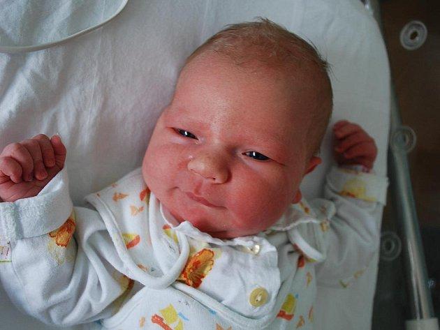 Karolína Šindlerová, Přerov, narozena 24. března 2010 v Přerově, míra 52 cm, váha 3 920 g