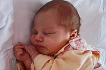 Natálka Šustková, Brodek u Přerova, narozena 23. března 2010 v Přerově, míra 51 cm, váha 3 200 g