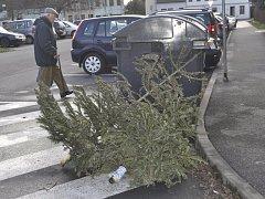 U kontejnerů v Přerově se objevily první vánoční stromky. Lidé se začali zbavovat symbolů svátků.