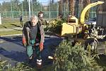 Odklízení vánočních stromků v Přerově a jejich následné mulčování