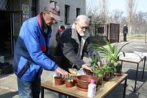 Vareálu Ornitologické stanice vPřerově se v sobotu 30. března konala výměnná burza.