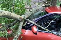 Následky noční bouřky: v Přerově spadl strom na uato
