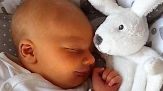 Vojtěch Tomčík, Dřevohostice, narozen 6. února 2019 v Přerově, míra 50cm, váha 3484 g.
