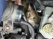 Přerovští hasiči zachraňovali kočku, která uvízla v motoru osobního auta.