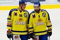 Hokejisté HC Zubr Přerov