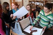 Zahraniční a čeští studenti zapojení do projektu Comenius prezentovali svá témata na Gymnáziu Jana Blahoslava a Střední pedagogické škole v Přerově. Zúčastnili se i výtvarné dílny.