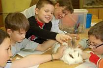 Děti si užívají jarních prázdnin, v Přerově navštěvují příměstské tábory