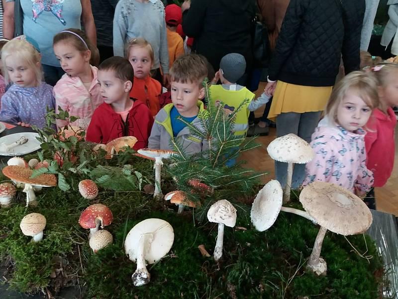 Výstava hub v přerovském klubu Teplo, 17. září 2021