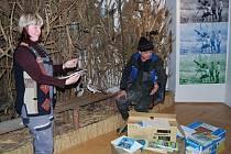 noční prohlídky mapující historii Moravského ornitologického spolku v Přerově