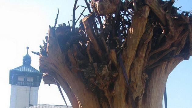 V Dřevohosticích vzniká nyní socha stařešiny, která bude připomínat starou alej