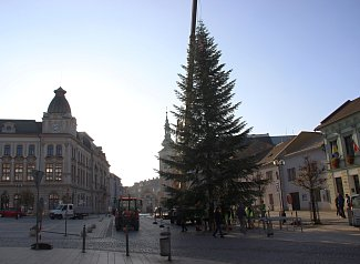 Instalace vánočního stromu na přerovském náměstí TGM