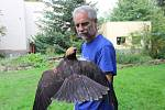 O poraněné dravce, které se podařilo zachránit, se postarali ornitologové v Záchranné stanici pro handicapované živočichy v areálu Ornitologické stanice v Přerově.