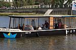 Kordulka na řece Bečvě v Přerově