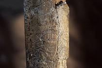 """Stylizovaná geometrická rytina ženy na mamutím klu, známá též jako """"Předmostská venuše"""" (délka 290 mm)"""