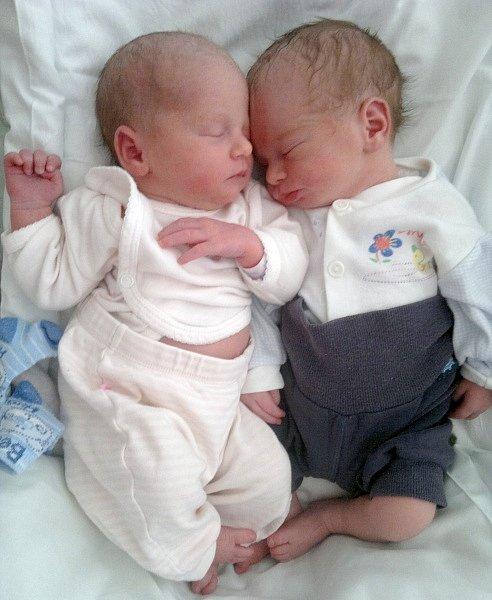 Natálie Lučanová, Přerov, narozena dne 12. srpna 2015 v Přerově, míra: 47 cm, váha: 2552 g Filip Lučan, Přerov, narozen dne 12. srpna 2015 v Přerově, míra: 47 cm, váha: 2654 g