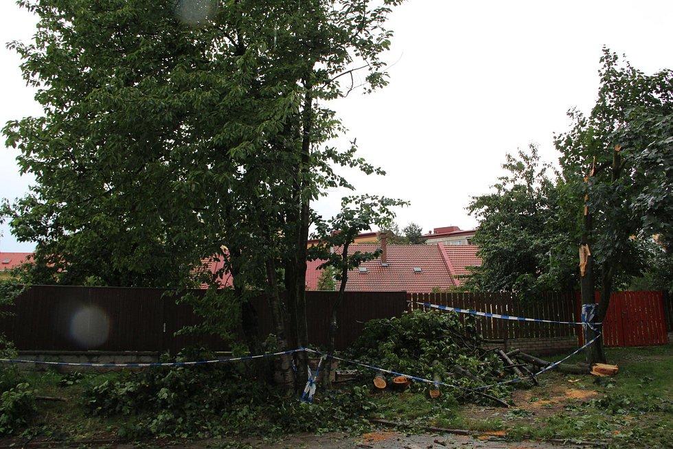 V důsledku průtrže mračen, která se v pátek odpoledne prohnala krajem, popadaly větve stromů na zaparkovaná auta v ulici Budovatelů v Přerově. Nikomu se naštěstí nic nestalo.