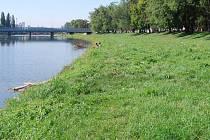 Nábřeží Dr. E. Beneše v Přerově. V těchto místech má být postavena povodňová zídka