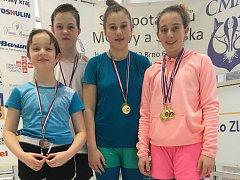Úspěšní plavci Fast Fins CZ Přerov