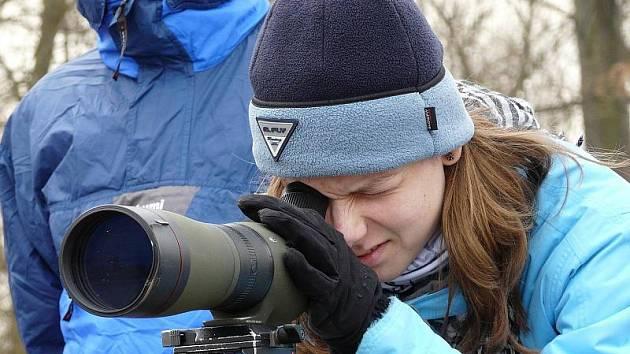 Pozorování ptáků u tovačovských rybníků