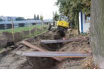 Na nábřeží Edvarda Beneše v Přerově začaly práce na stavbě protipovodňové zídky, stromy ale zatím vykáceny nebyly.