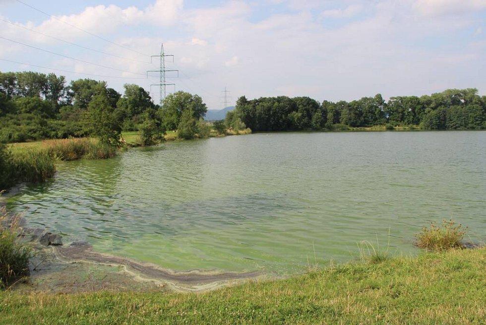 Konec července 2016. Jezero Jadran v Oseku nad Bečvou