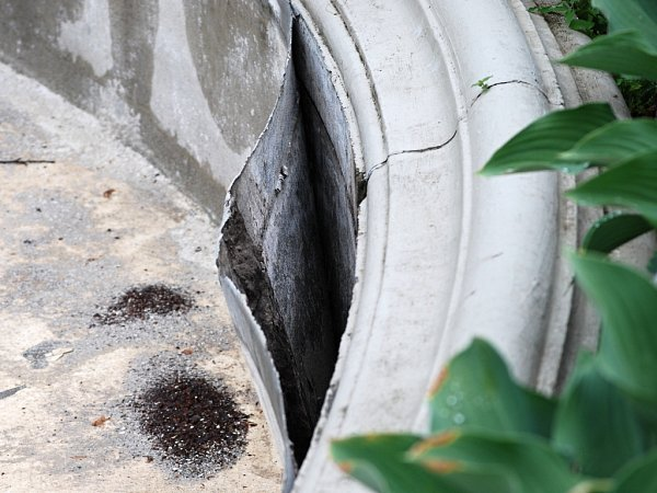 Vodní prvky vpřerovském parku Michalov pomalu ztrácejí svůj glanc. Kašnu svodotryskem poničily mrazy, takže je mimo provoz, a jezírko zarostlo plevelem.