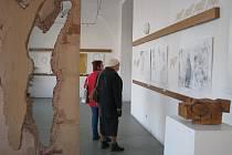Díla mladé výtvarnice Pavly Kačírkové mohou zájemci vidět v galerii na Masarykově náměstí v Kojetíně až do konce letošního roku