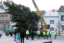 Vánoční strom to na přerovské náměstí neměl daleko. Doputoval z nedaleké místní části Kozlovice. Jeho ukotvení trvalo jen pár desítek minut.