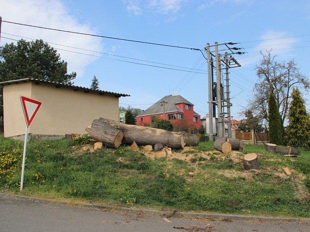 Kácení stromů ve Veselíčku