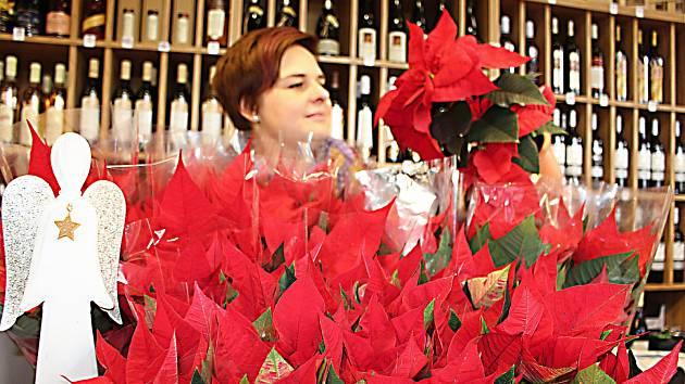 Podej vánoční hvězdy v Hranicích. Ilustrační foto