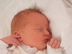 Alenka Skřipcová, Přerov, narozena dne 20. března 2013 v Přerově, míra: 49 cm, váha: 3200 g
