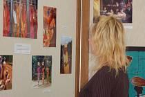 Výstava je součástí kampaně proti diskriminaci žen.