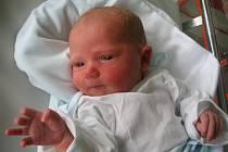 Nicole Harazinová se z Horního Štěpánova se narodila 19.12. a rodičům se pochlubila svými 48 cm a 3,1 kg.