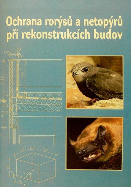 Podrobná příručka kochraně rorýsů a netopýrů