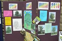 Strom Hranicka roku 2010