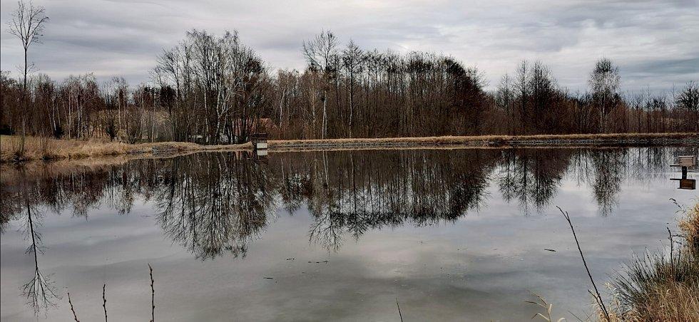 Rybník na Boškově