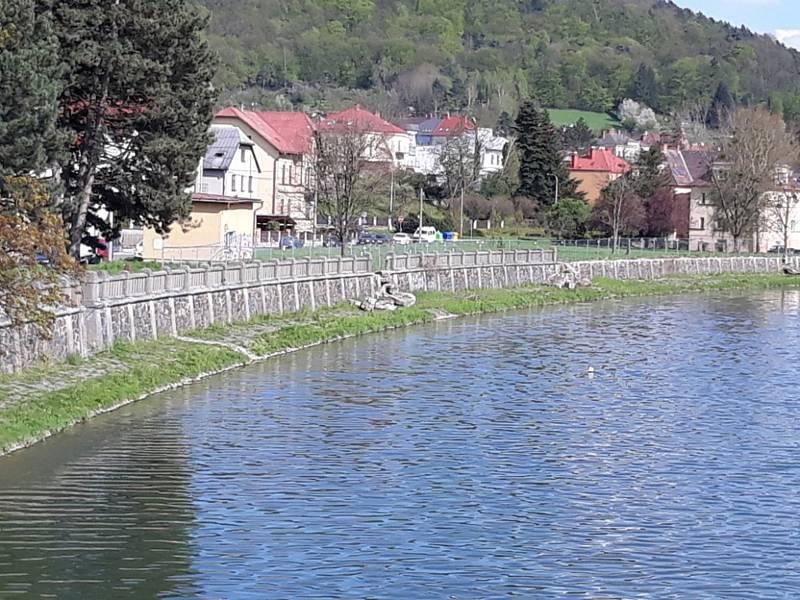 Demolice historické zídky u Bečvy v Hranicích.