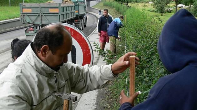 Minulý týden se účastníci projektu z Bělotína učili, jak správně stříhat živý plot.