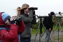 Sobotní exkurze za ptáky na tovačovských rybnících se koná v letošním roce naposledy.