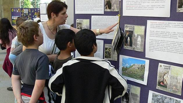 Výstava ke Světovému dni životního prostředí