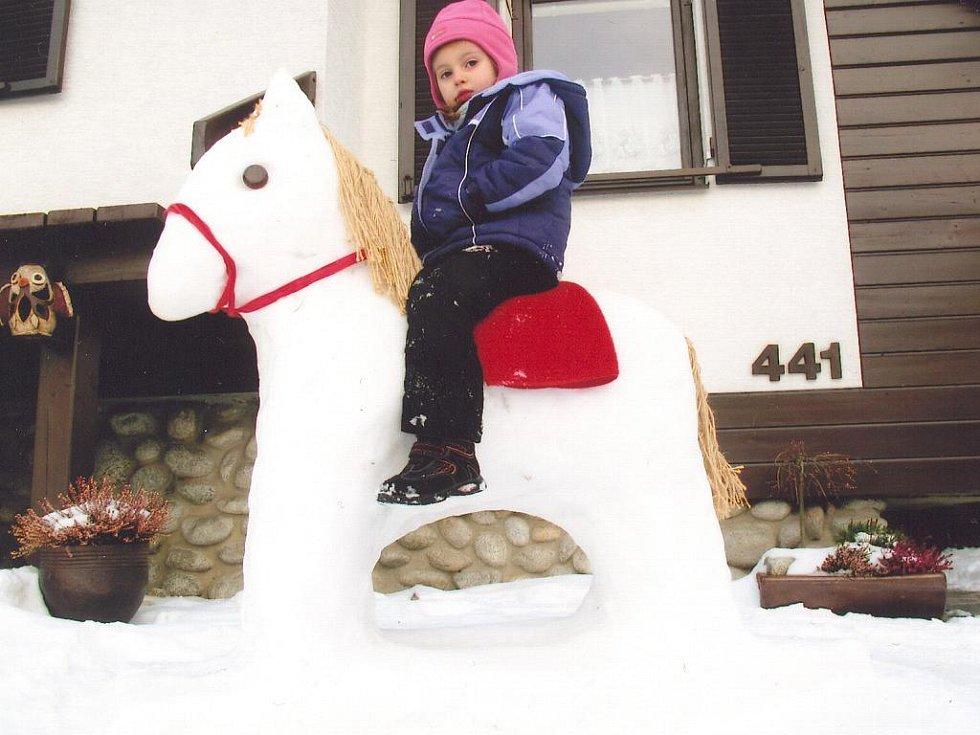 Sněhový koník v Drahotuších.