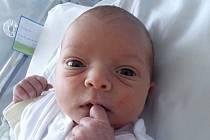 Kristyna Koprušáková, Přerov, narozena dne 14. června 2014 v Přerově, míra: 49 cm, váha: 2890 g