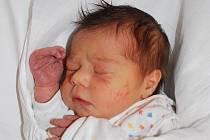 Lucie Briestenská, Bystřice pod Hostýnem, narozena 2. března 2010 v Přerově, míra 50 cm, váha 3 250 g