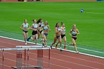 Adéla Dostálová (třetí zprava) při závodě na 800 metrů.