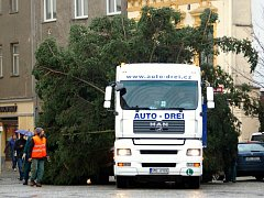 Vánoční strom v Hranicích. Ilustrační foto