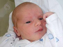 Max Chrastina, Rakov, narozen dne 21. srpna 2015 v Přerově, míra: 52 cm, váha: 3640 g