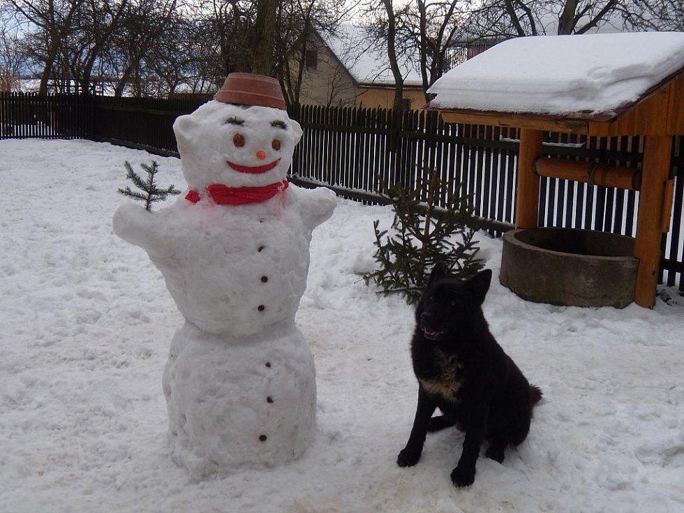 V Paršovicích hlídají sněhuláky psi.