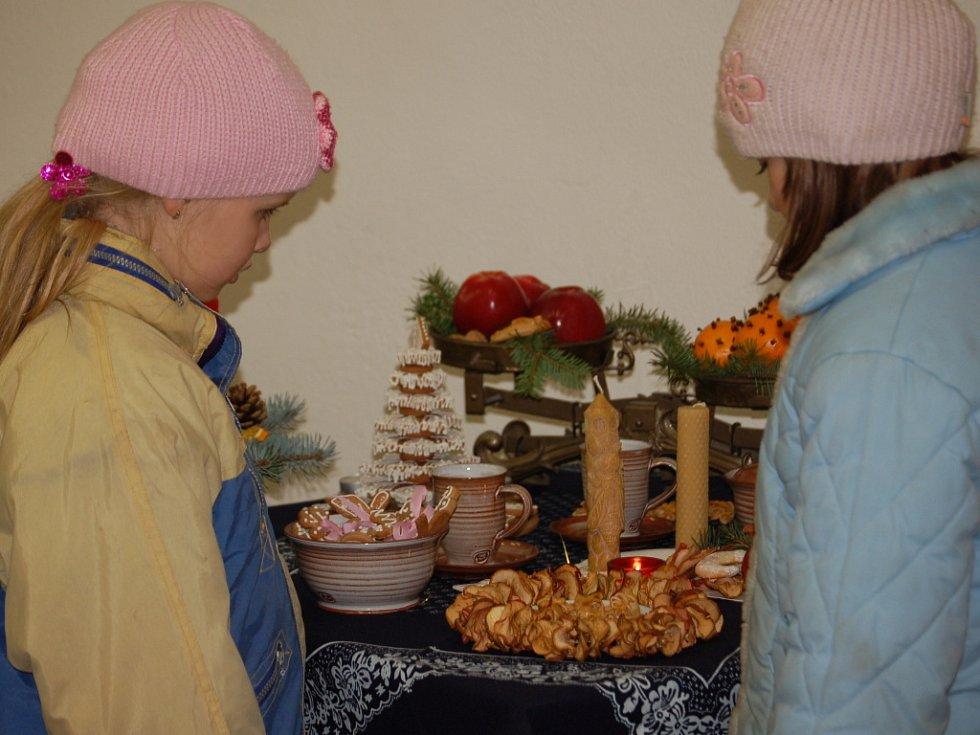 Vánoční výstavu, která byla k vidění o víkendu v Domě zahrádkářů v Beňově, připravili už potřetí členové místního Klubu důchodců.