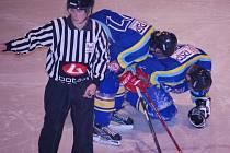 Sezona byla pro přerovské hokejisty smolná, plná zranění.