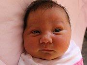 Leontýna Brázdová, Troubky nad Bečvou, narozena 20. srpna 2016 v Přerově, míra 53 cm, váha 4160 g